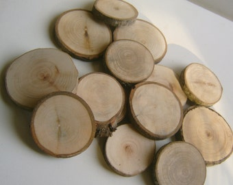 100 Tree Branch Slices  2.75 to 3.25 inch
