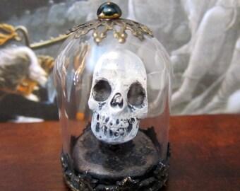 Victorian Skull Specimen dollhouse miniature in 1/12 scale