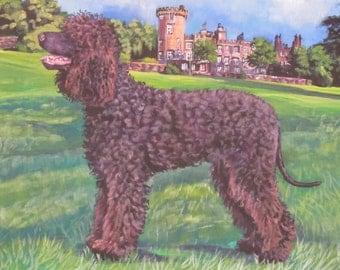 """Irish Water Spaniel dog art PRINT of LAShepard painting 8x10"""""""