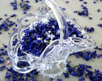 Larkspur, Blue Larkspur, Purple, Flower Girl, Flowers, Dried Flowers, Wedding Favor, Aisle Decor, Flowers, Wedding Decorations, 12 US cups
