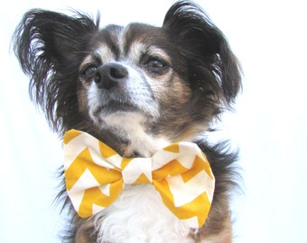 Pet Dog Bowtie-Mustard Yellow Chevron-CLip on