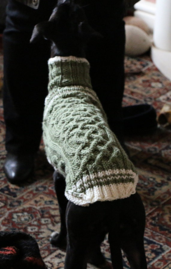 Whippet Dog Sweaters Pattern Central Knittinghelp Forum Community