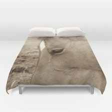Popular Items For Horse Bedding On Etsy