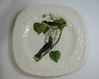 Vintage 1940s Alfred Meakin / Audubon's Kingbird / English China Plate Excellent Condition from Audubon's Birds of America