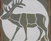 4x4 Wapati Elk Tile - SRA