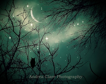 Owl, Print, Stardust, Fine Art Photograph, Nature, Moon, Starry Night, Trees, Whimsical, Magical, Surreal, Green, Photo, Art, Wall Decor