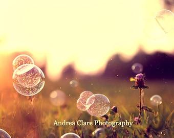 Bubble Photograph , Fine Art, Summer Photograph, Photography, Art, Nature, Field, Summer, Sunset, Golden, Yellow, Surreal, Dreamy, Wall Art