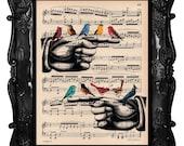Birds on hand art print - birds finger art - original design birds on hand antique music page art print colorful birds