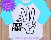 I am This Many Raglan Birthday Shirt 1 2 3 4 5 Birthday Tshirt 5 Color Options Kids Birthday Number Shirt Raglan Birthday Shirt Birthday