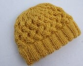 Cabled Apple Pie Hat.