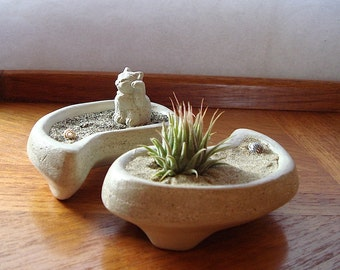 Air Plant . Nano. Yin and Yang . Maneki Neko. Concrete . Bowl . Set