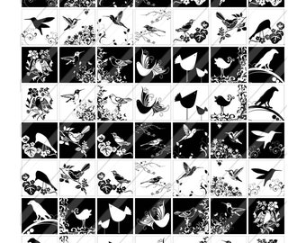 INSTANT DOWNLOAD-1x1 inch squares - Black and White Bird Silhouettes - Pendants-Tiles-Scrabbles