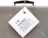 Funny personalized travel bag tag. Custom luggage label. LE MINI