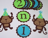 Picture Banner, 1st Year photo banner, Babys first year birthday banner, Monkey party banner