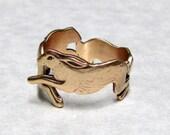 Running Rabbit Ring