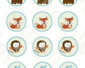 """Printable """"Forest Animal Friends/Fox/Bear/Owl/Turtle"""" Cupcake Toppers/Stickers/Tags Instant Digital Download"""