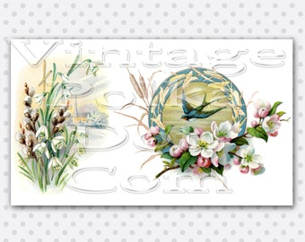 Vintage flowers sparrow graphics clipart digital download apple blossoms scrapbooking