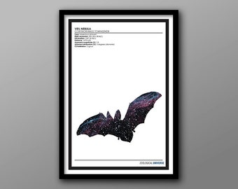 Space Bat // Zoological Universe Poster Series // Minimalist Animal Kingdom, Space and Astronomy Silhouette Print