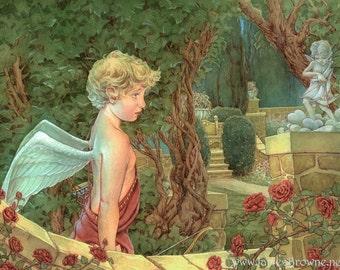 Cupid's Garden 8.5x11 Signed Print