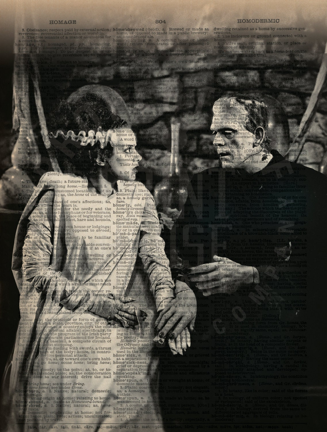 Bride Of Frankenstein And Frankenstein Halloween Decor 8x10