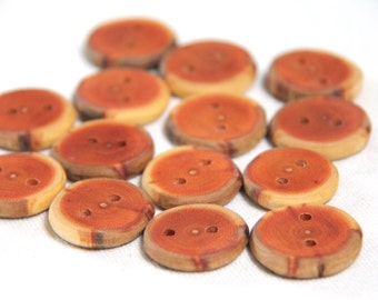 6 small buckthorn buttons - creamy edge - 1""