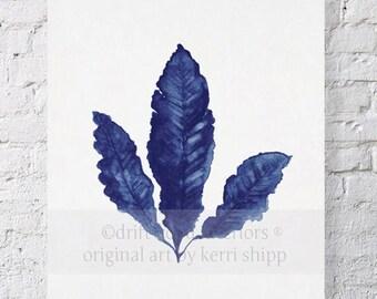 Sea Fan in Denim II Print 11x14 - Sea Life Art Print - Coral Art Print - Blue Coral Print - Seaweed Watercolor - Marine Life Print