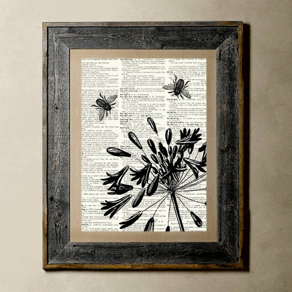 Buy 1 get 1 Free - Agapanthus(Version 1) - Printed on a Vintage Dictionary, 8X10, dictionary art, paper art, illustration art, collage