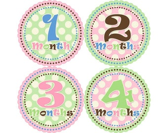 Baby Stickers Monthly, Girls Baby Bodysuit Stickers, Monthly Stickers, Baby Month Stickers, Monthly Bodysuit Stickers, Polka Dots (G018)