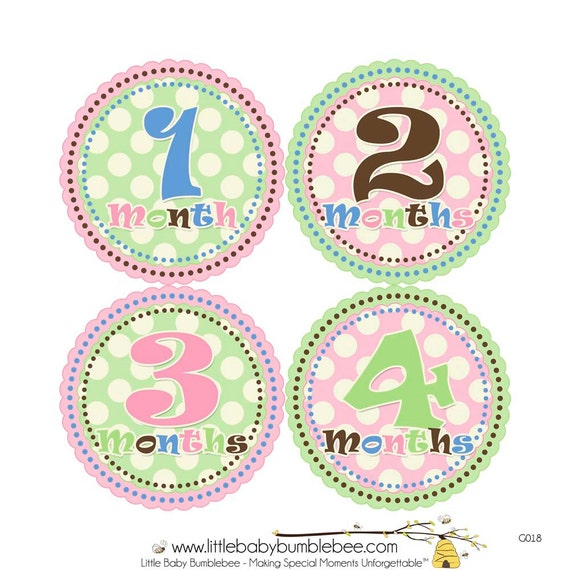 Monthly Baby Stickers, Girls First Year Photo Props, Baby Month Stickers, Baby Announcement, Monthly Photos, Baby Gift, Polka Dots (G018)