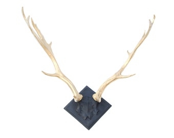 FAUX TAXIDERMY - Large Faux Deer Antlers - Black Mount and Gold Antlers Wall Mount LA1708