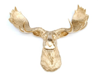 Faux Taxidermy - Gold Moose Head  - Resin Moose Wall Mount M0808