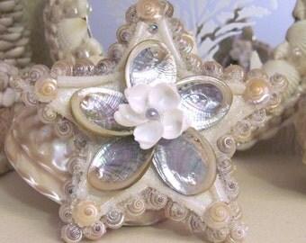 Iridescent Abalone Seashell Star Ornament