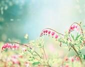 "Bleeding Heart Photography - spring pink blue aqua flower love nursery print floral wall photo pastel botanical pale photograph, ""Fairytale"""