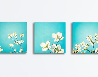 Aqua Canvas Flower Set of Three, 3 dogwood blue white floral photography colorful nature prints botanical wall art set gallery wrapped 20x20