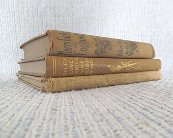 Antique Book Collection Beige Neutral Vintage Book Bundle Decorator Hardcover Books Décor Decorate Designer Books Khaki Library Lot of 3