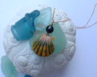 Sunrise Shell Necklace on 14kt Gold Filled Chain w/ Tahitian Pearl