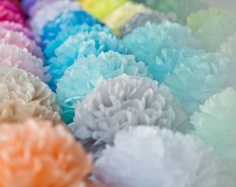 2 large, 6 medium, 6 small tissue Pom Pom - pick your colors -  wedding party decorations / Bridal Baby Shower  / 1st Birthday