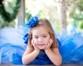 Light Blue and Royal Tutu Dress, Blue Tutu Dress, Pageant Dress, Kids Photo Props, Blue Flower Girl Dress
