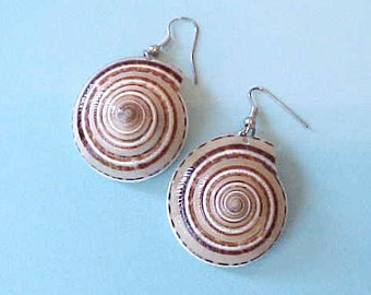 Pretty Earrings Made of Seashells in Mocha and Brown Colors
