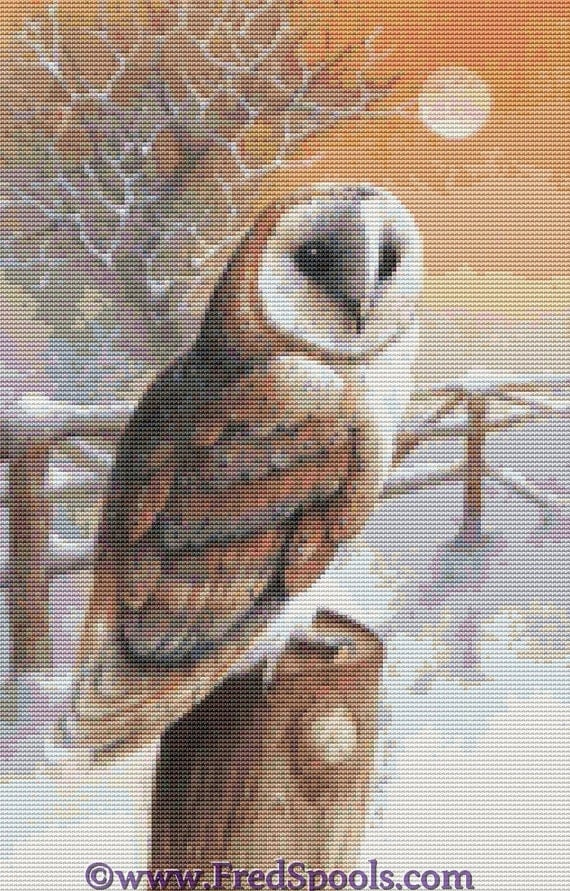 Cross Stitch Kit ' Barn Owl ' By Artist David Finney - Needlecraft Set with DMC materials