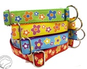 "Daisy Blossom Dog Collar - 1"" (25mm) Wide - Choice of color, size and style - Martingale or Quick Release // Red // Blue // Yellow // Purple"