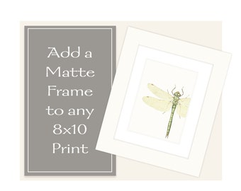 Matte Framing for 8 x 10 Prints