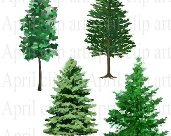 4 Pine Tree EPS and PNG, Vector files, Clip art graphics