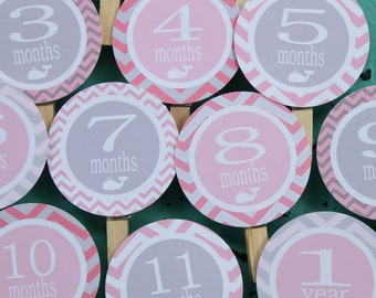 SWEET WHALE 1st Birthday Photo Clips Banner Newborn - 12 months - Party Packs Available