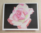 Blank Pink and White Rose Card with Envelope