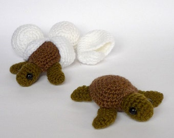 Green sea turtle babies and eggs (made to order)
