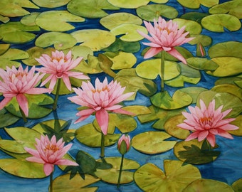 Pink Waterlily Garden 1