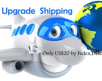 Upgrade shipping:  Fedex,DHL,EMS express delivery