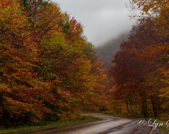 Vermont Color -  Nature photography, landscape photography, fall, autumn, fine art print, leaves, new england, Vermont