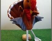 Rupert, the turkey